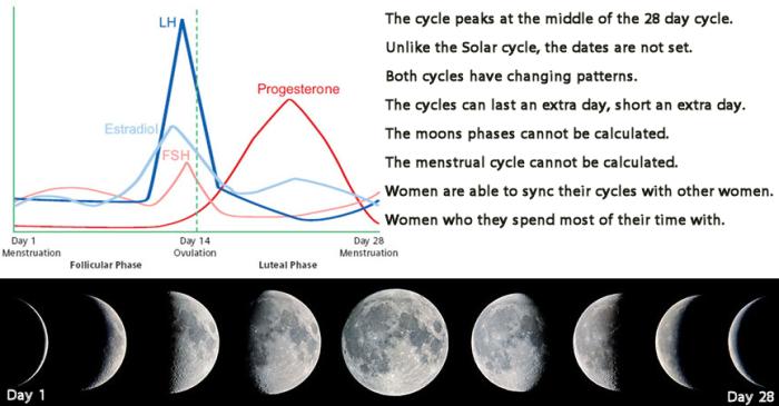 moon cycle 2